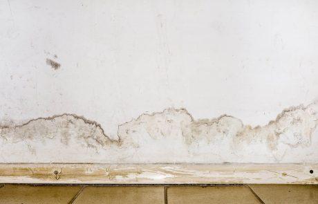 ייבוש ורטיבות: איך מצליחים לנצח רטיבות בקירות?